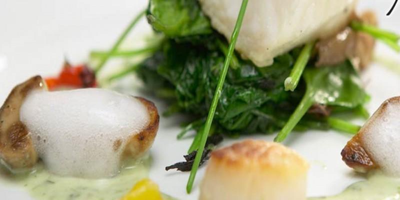 Airspuma - Culinary Foam