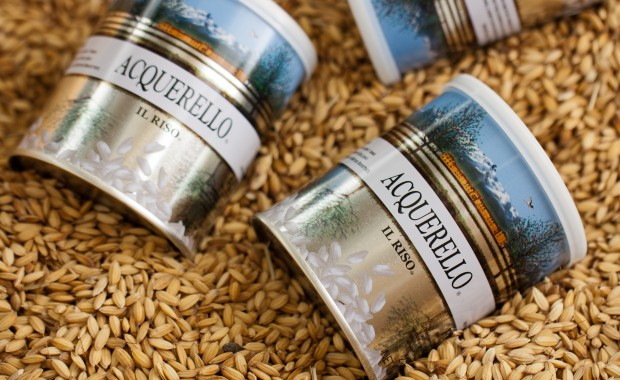 "ACQUARELLO ""Le Riz Ultime"""
